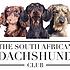 SA dachshund club